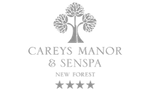 Careys Manor logo
